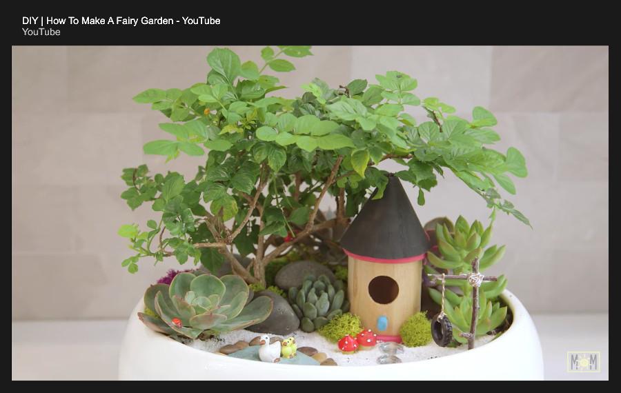 indoor fairy garden - the result