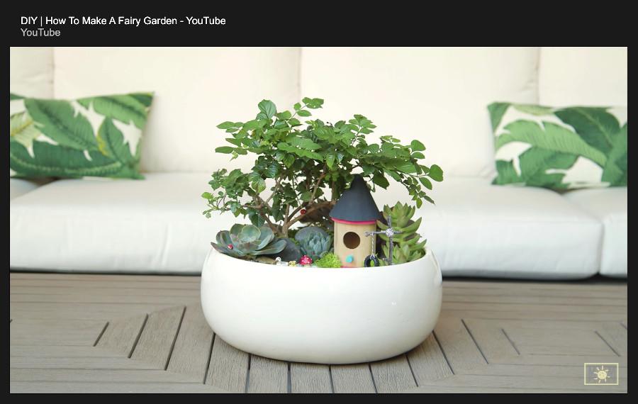 indoor fairy garden - the final result